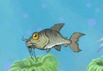 Рыбак чемпион