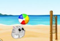 Пляжный Волейбол Ио